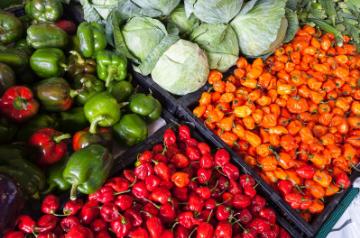 trattamento verdure e alimenti ditta boverio luigi srl